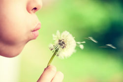 5 Tips To Prepare For Allergy Season
