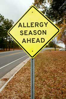 Amazing Tips To Help You Get Through Allergy Season