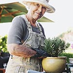 How to Grow Easy Houseplants for Seniors article thumbnail