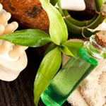 8 Great Uses For Tea Tree Oil article thumbnail