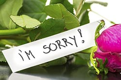 Can Saying You're Sorry Save Your Life?