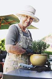 How to Grow Easy Houseplants for Seniors